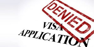 U Visa Lawyer